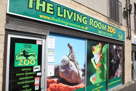 The Living Room Zoo – West Lothian\'s Domestic and Exotic Pet ...